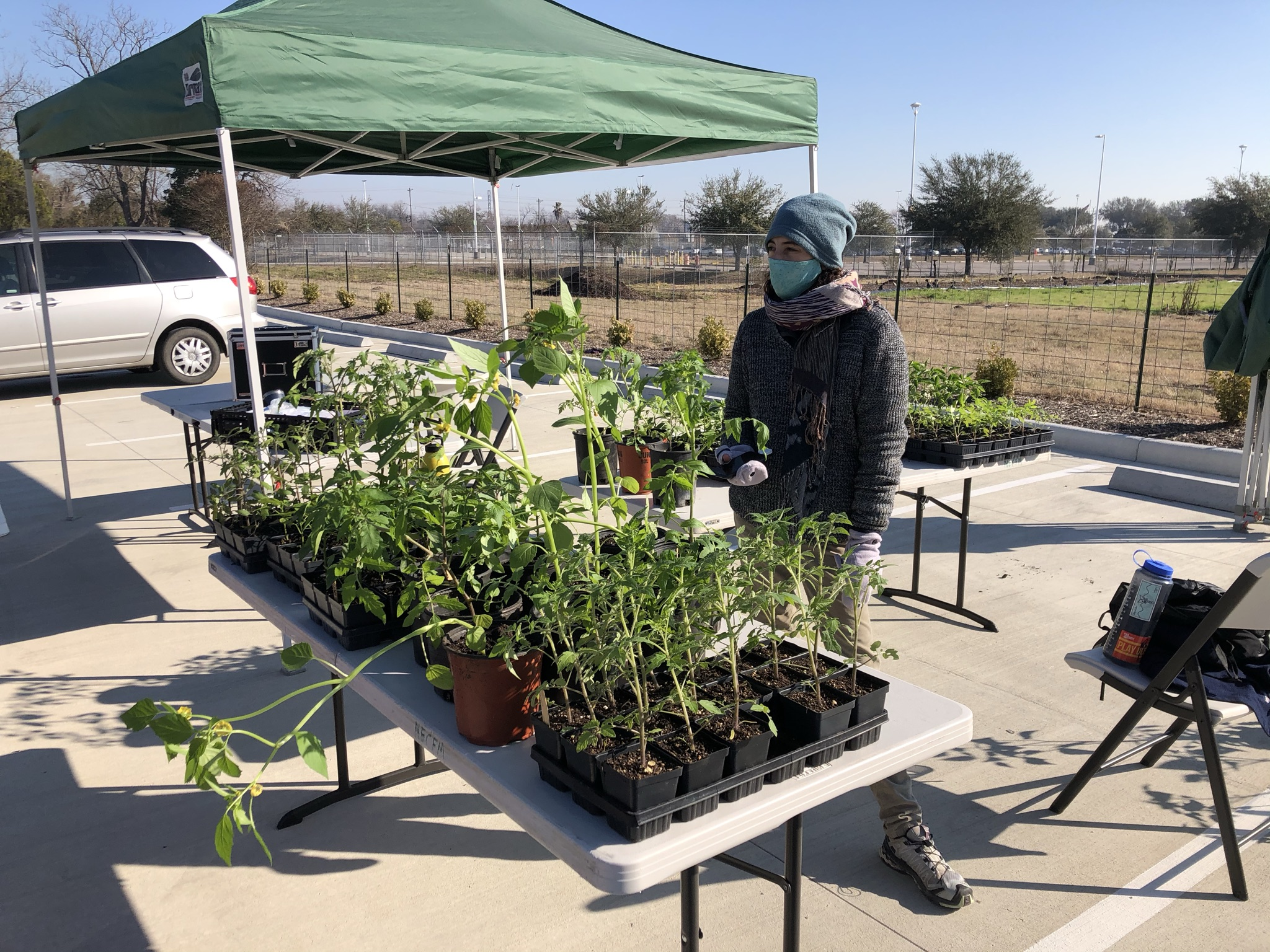 LBJ Farmers Market Plant Sale | Saturday Mar 6th